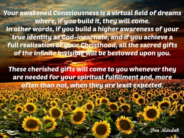 Your awakened Consciousness is a virtual field of dreams