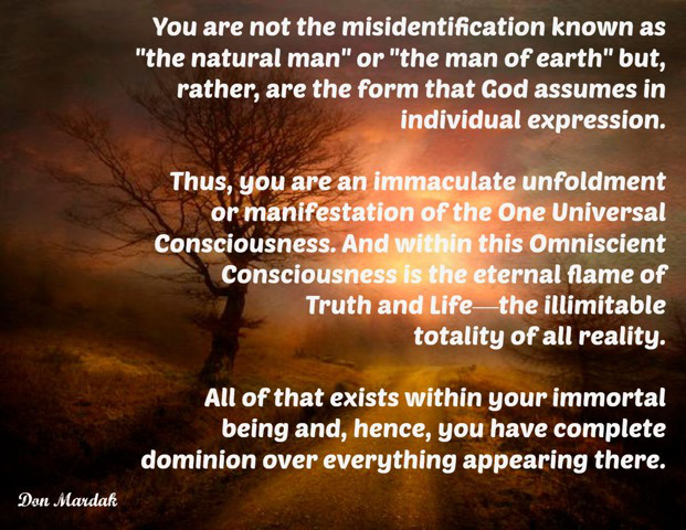 you-are-not-the-misidentification-known-as-the-natural-man