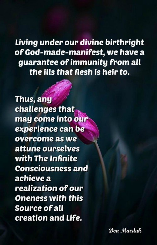 Living under our divine birthright of God-made-manifest, we have a guarantee of immunity