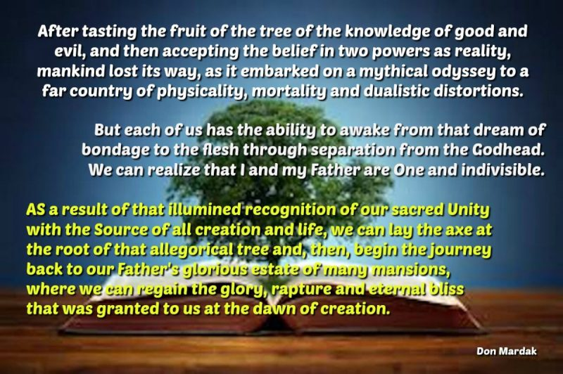 After tasting the fruit of the tree of the knowledge of good and evil