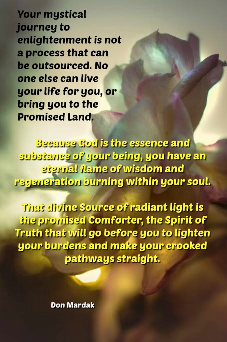 Your mystical journey to enlightenment is not a process that can be outsourced